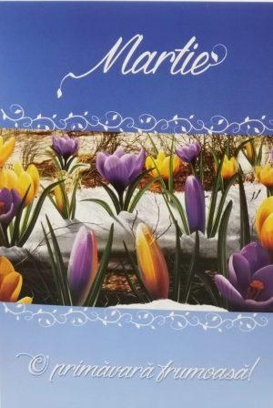 Felicitare cu plic Martie cu mesaj si model floral branduse